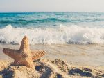 Starfish on a Beach - where is your focus?