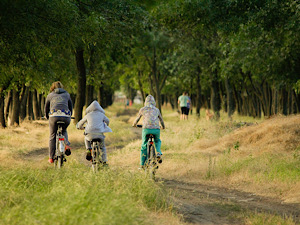 Family biking together in country field while on vacation.Marylee Pangman